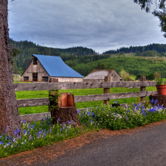 barns in front of mountains with wood fencing along road with flowers