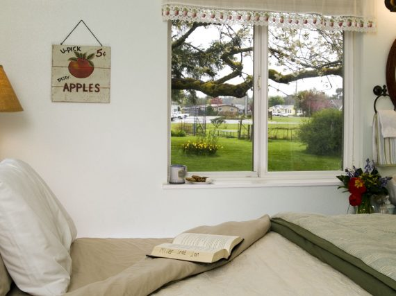 bed next to window looking out at tree