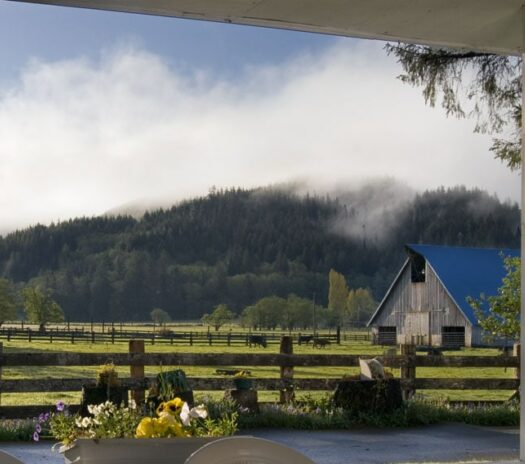 view from porch with 2 chairs looking out to pasture with mountain in background